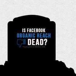 5 modi aumentare il traffico organico su Facebook