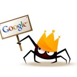 scansione spider google