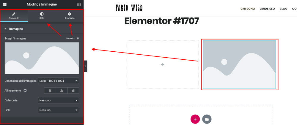 Elementor Widget